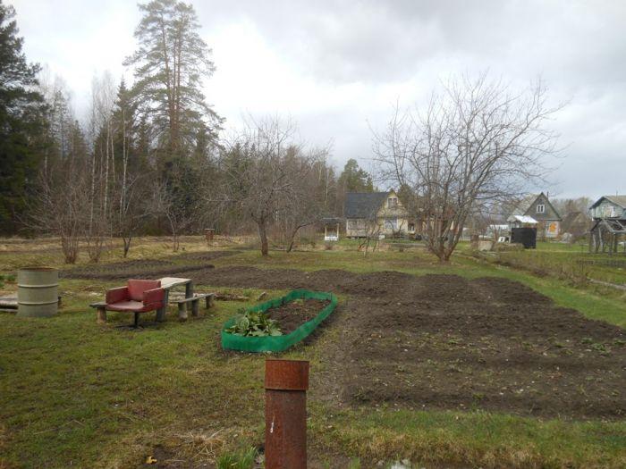 Садовый участок в садовом товариществе в тульской области частные объявления продажа квартир новокосино новогиреево свежие вакансии